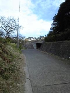 2011年初おさんぽ